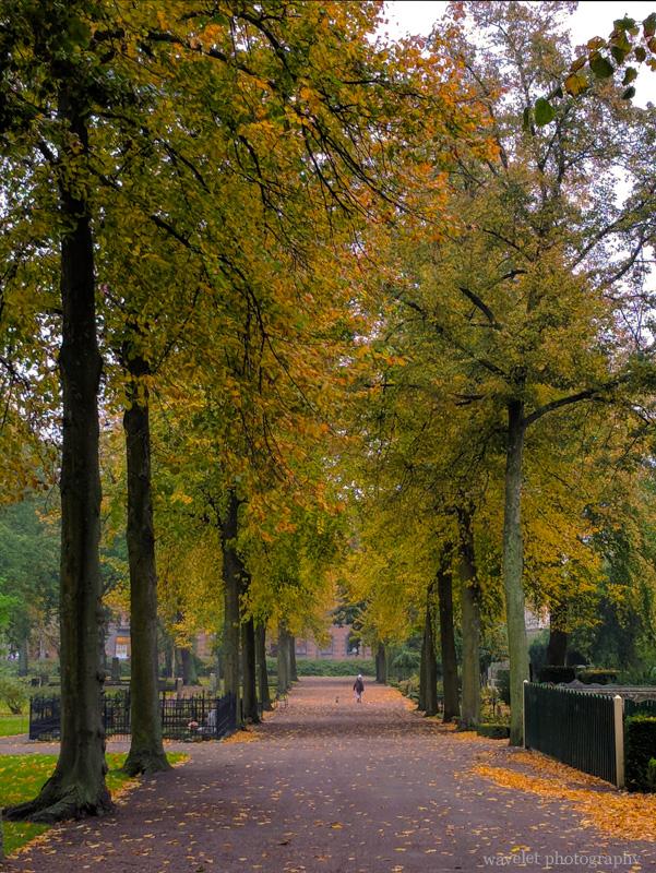 Old cemetery (Gamla kyrkogården), Malmö
