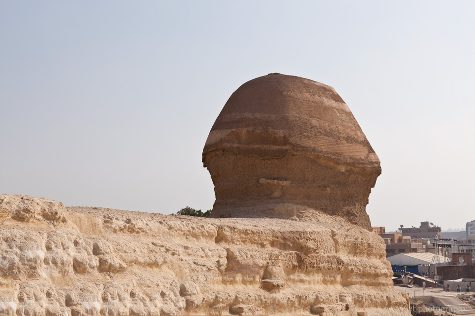 The Sphinx' back of the head