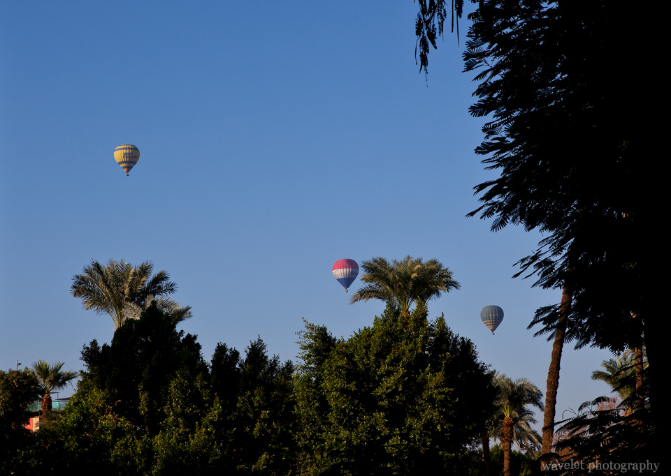 Hot Air Balloons over Luxor