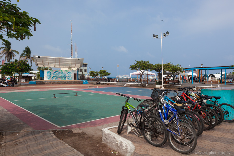 Puerto Ayora, Santa Cruz Island