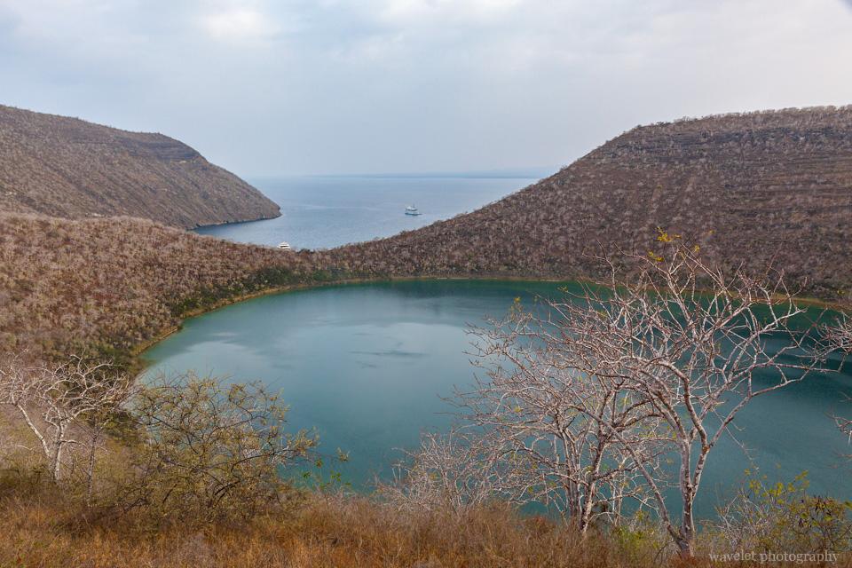 Darwin Lake, Caleta Tagus, Isabela Island