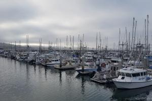 Half Moon Bay Harbor