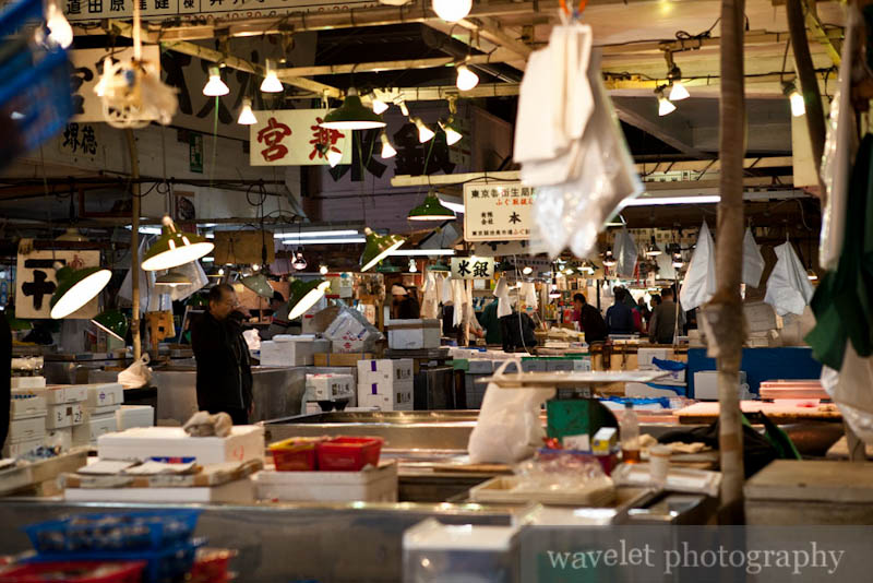 Tsukiji Fish Market (筑地市场)