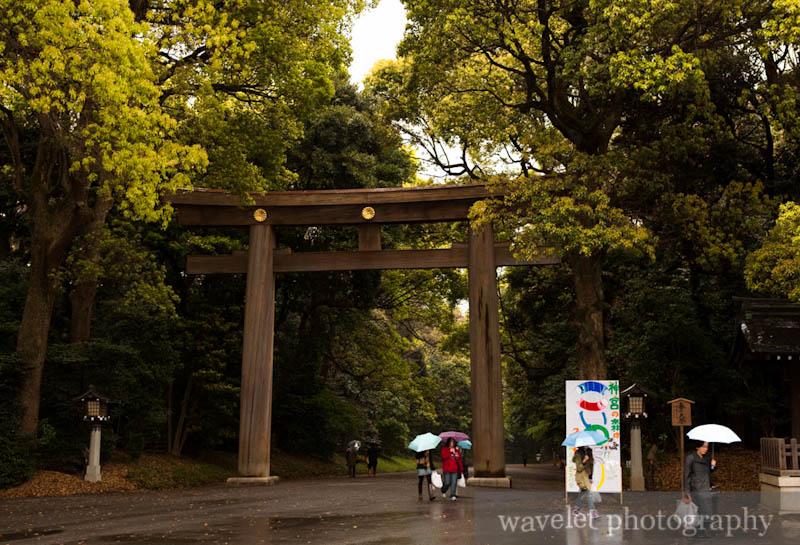 Meiji Shrine (明治神宫,东京)