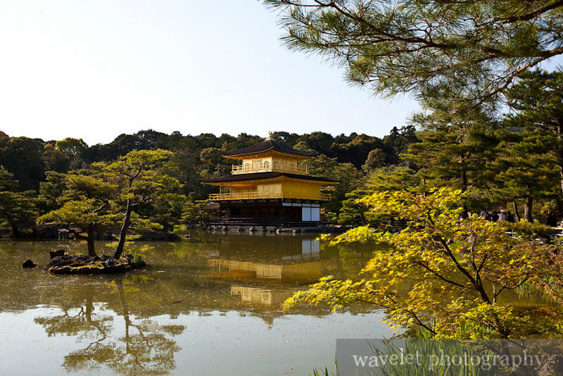 Kinkaku-ji Temple (金閣寺)