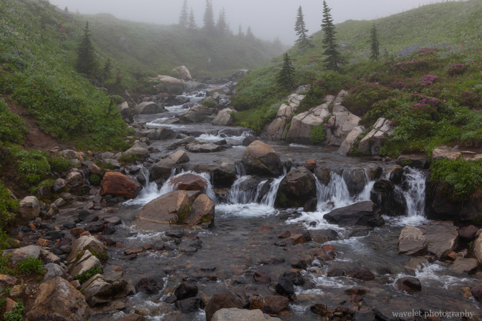 The creek near Myrtle Falls, Skyline Trail, Paradise, Mt. Rainier
