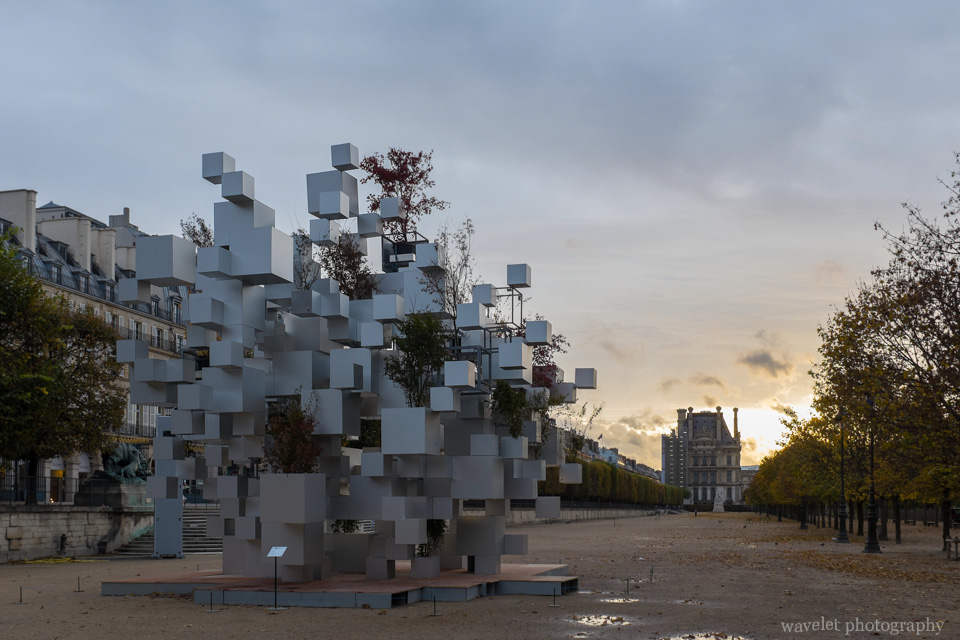Many Small Cubes by Sou Fujimoto in the Tuileries Garden, Paris