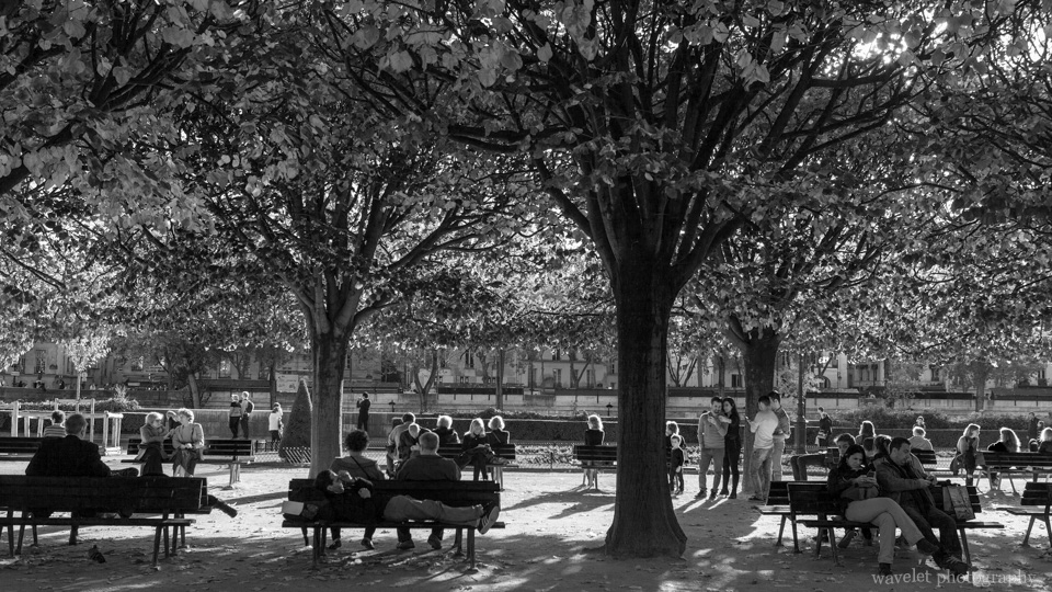 Square Jean XXIII at the back of Notre-Dame, Paris
