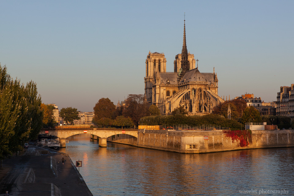 Notre-Dame and Pont de l\'Archevêché that connects Île de la Cité with the Left Bank, Paris