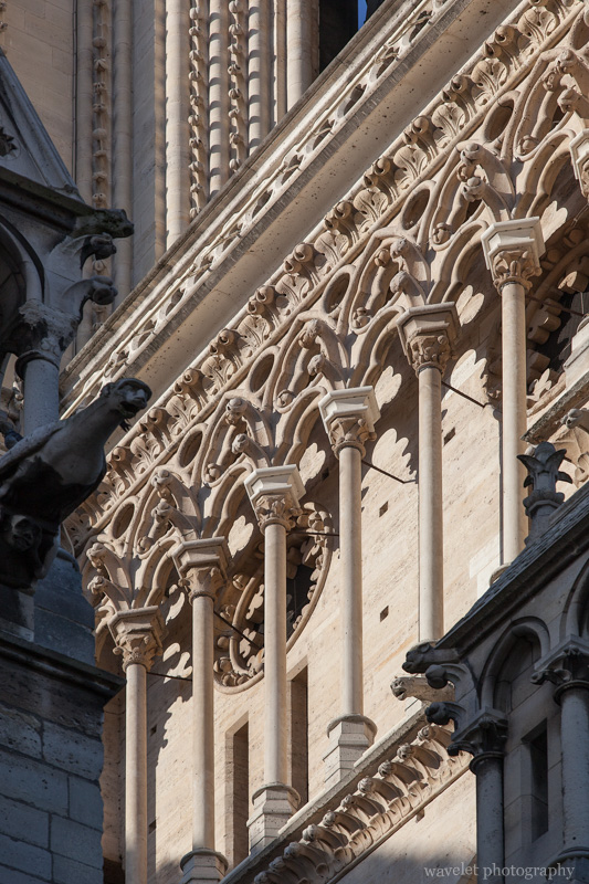 Gallery of Notre Dame de Paris