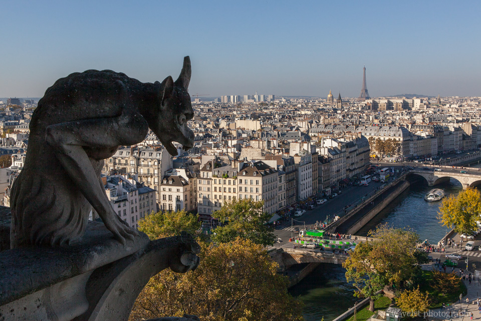 Chimera overlooking River Seine, Notre-Dame de Paris