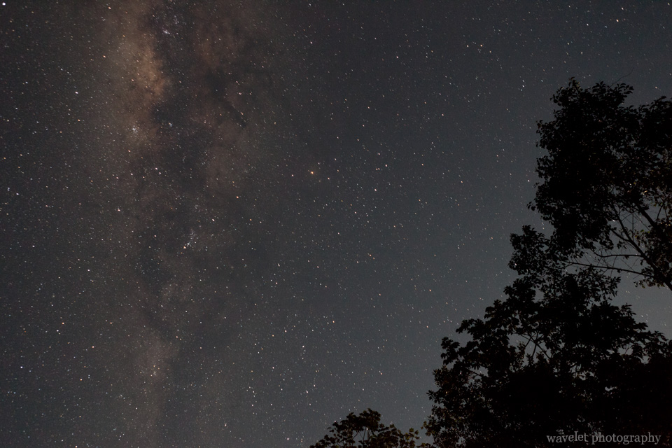 Star Shot of the Southern Hemisphere Sky