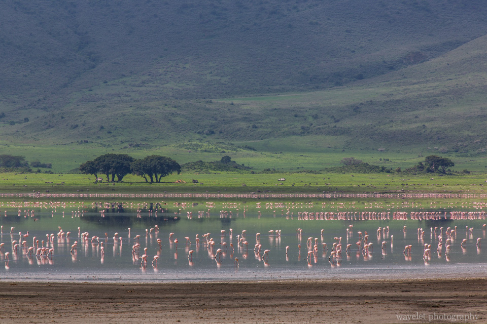 Lake Makat in Ngorongoro Crater