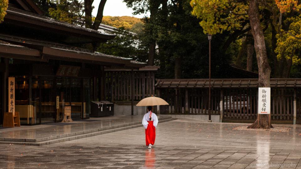 Meiji Shrine (明治神宫), Tokyo