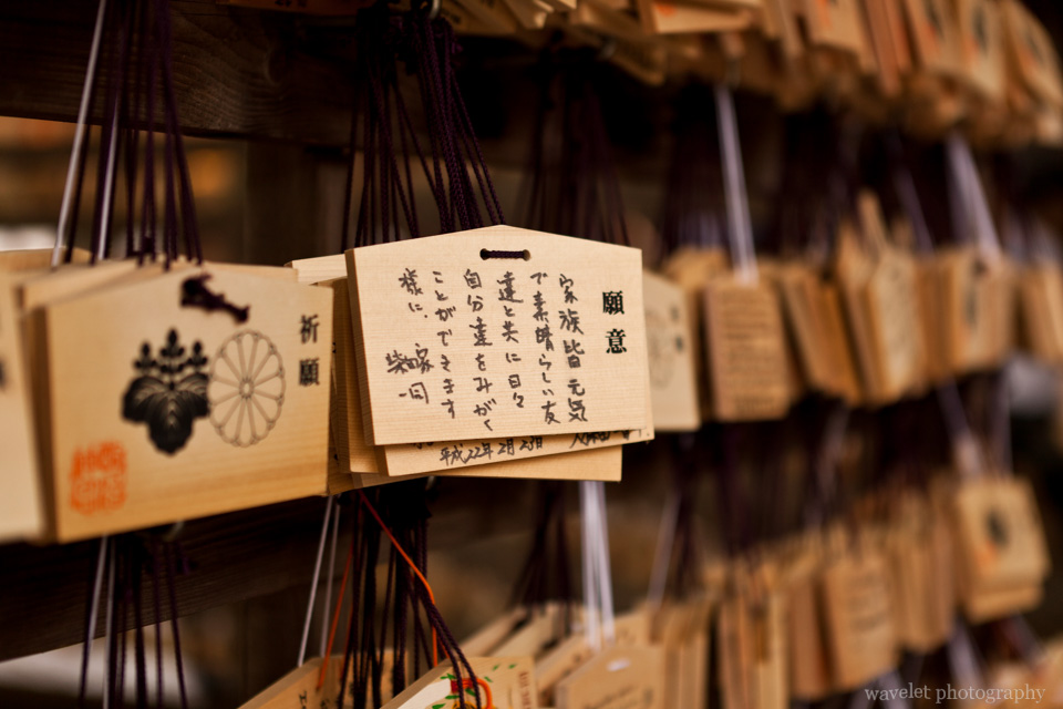Meiji Shrine (明治神宫), Tokyo