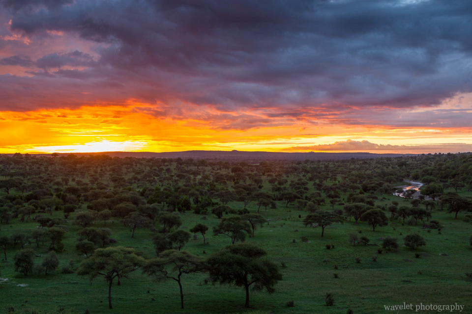 Sunrise at Tarangire National Park
