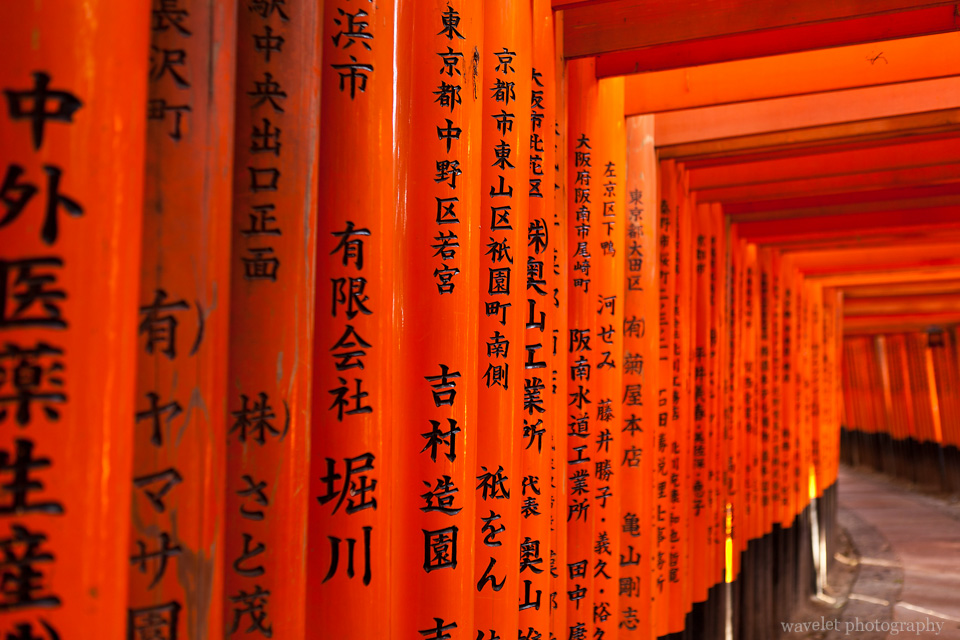 Tori (鸟居) at Fushimi Inari Shrine (伏見稲荷大社), Kyoto