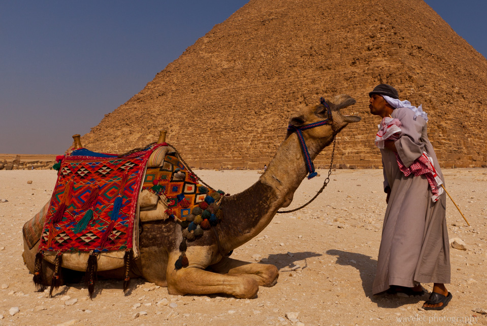 Camel man and his camel posed in front of Khafre's pyramid, Giza, Cairo