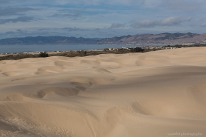 Oceano Sand Dunes