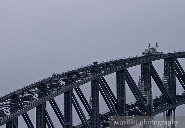 Harbour Bridge Climber