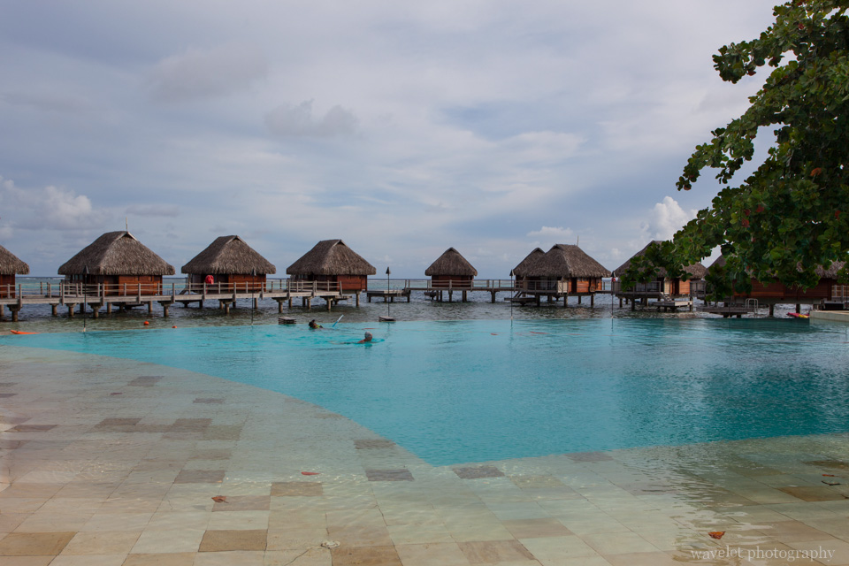 Infinity Pool, Moorea Pearl Resort