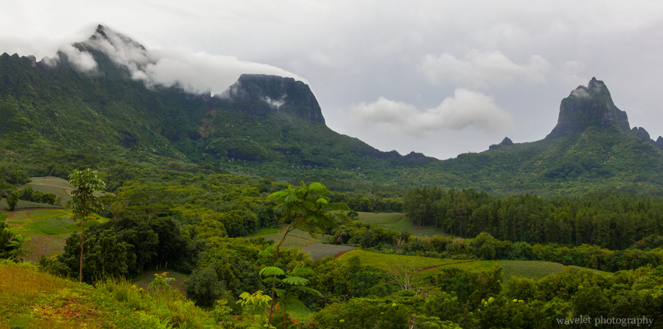 Moorea\'s volcanic crater and plantations, Moorea ATV Tour