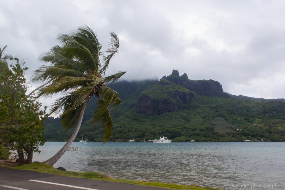 Cook\'s Bay, Moorea