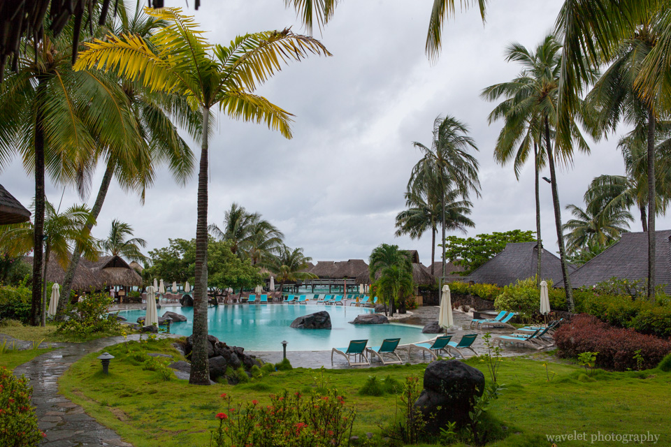 Garden of Hilton Moorea Lagoon Resort & Spa