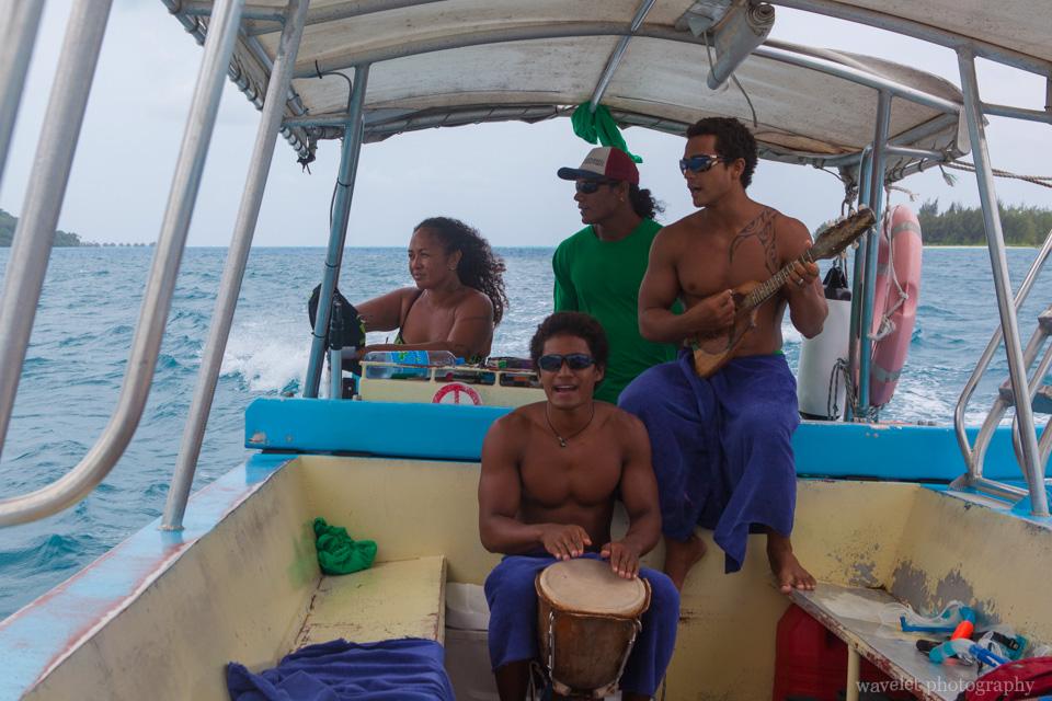 Shark and Ray feeding tour, Bora Bora