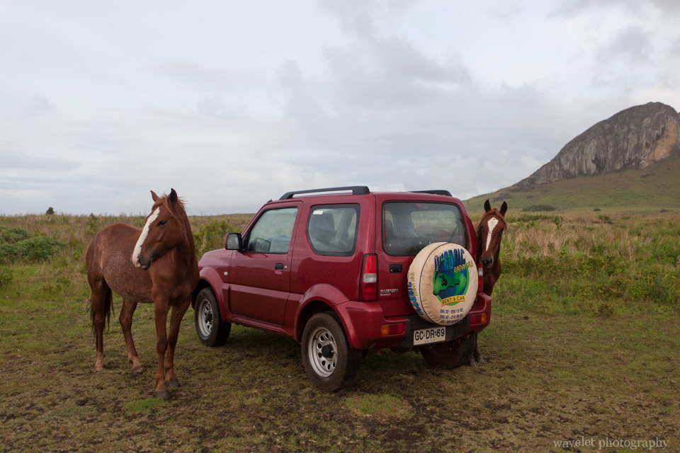 Near Ahu Tongariki, Easter Island