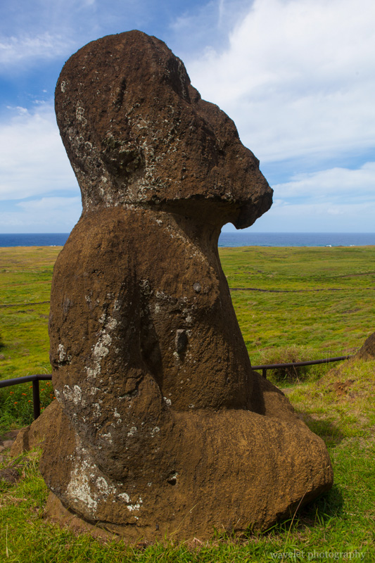 Tukuturi, a moai with beard and  in unusal kneeling posture, Rano Raraku, Easter Island