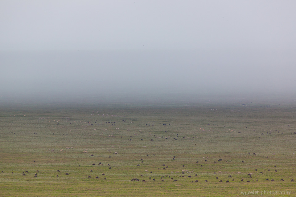Storm is approaching Naabi Hill, Serengeti National Park