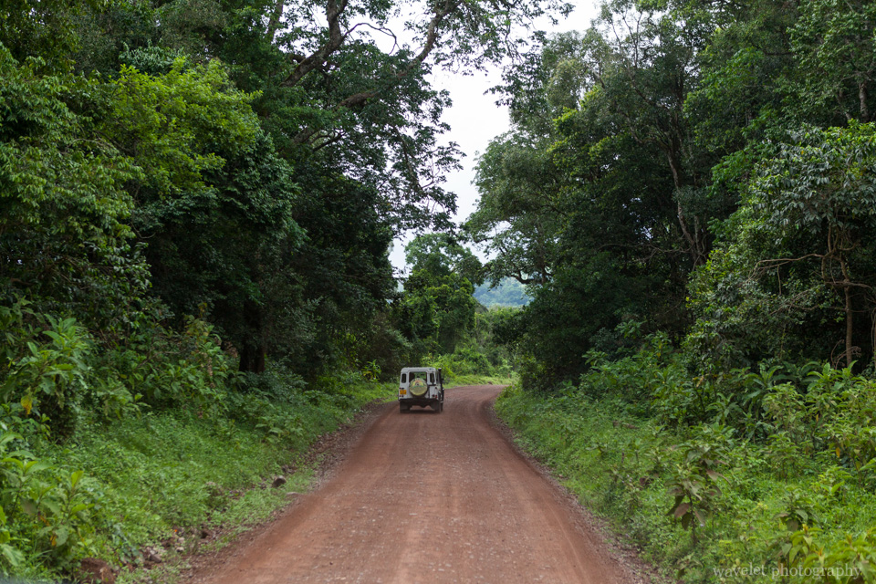 Game drive at Arusha National Park, Tanzania