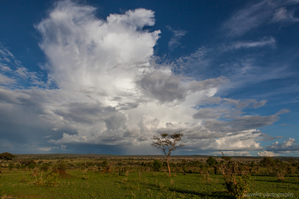 Cloud in Tarangire National Park
