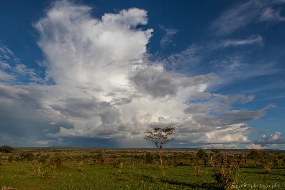 Cloud in Tarangire National Park