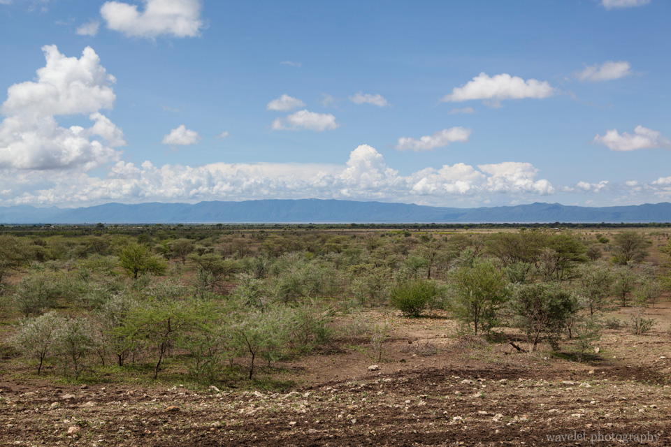 From Tarangire to Lake Manyara