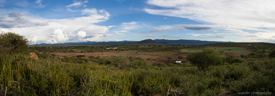 Agriculture area near Lake Eyasi
