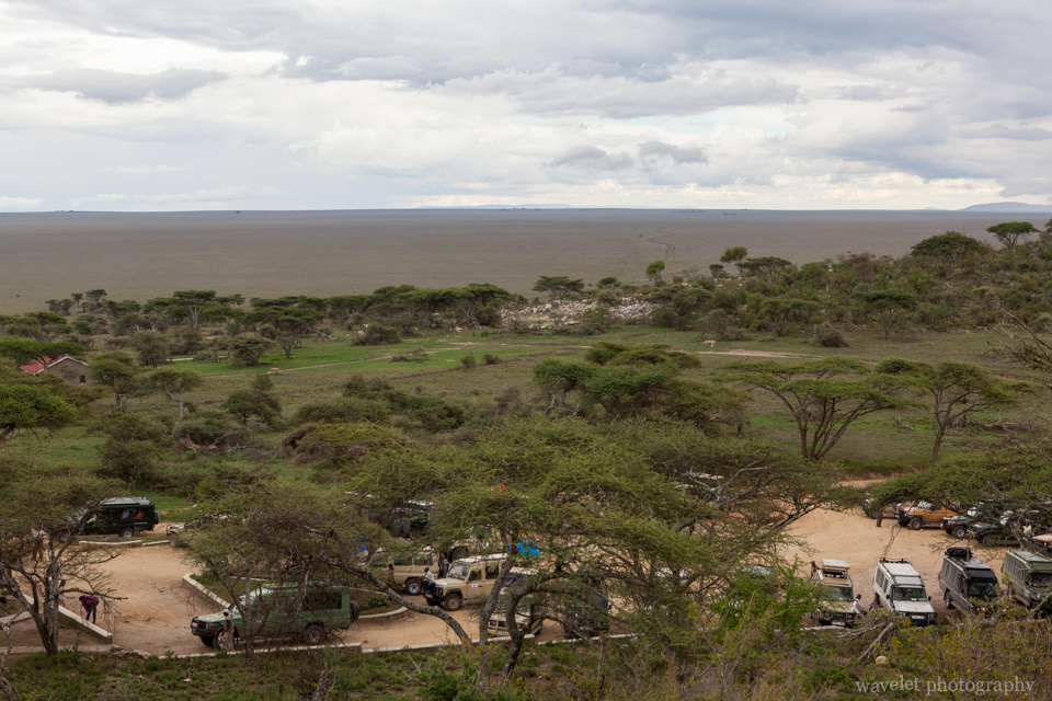 Endless grassland in south Serengeti, the entrance of Serengeti National Park