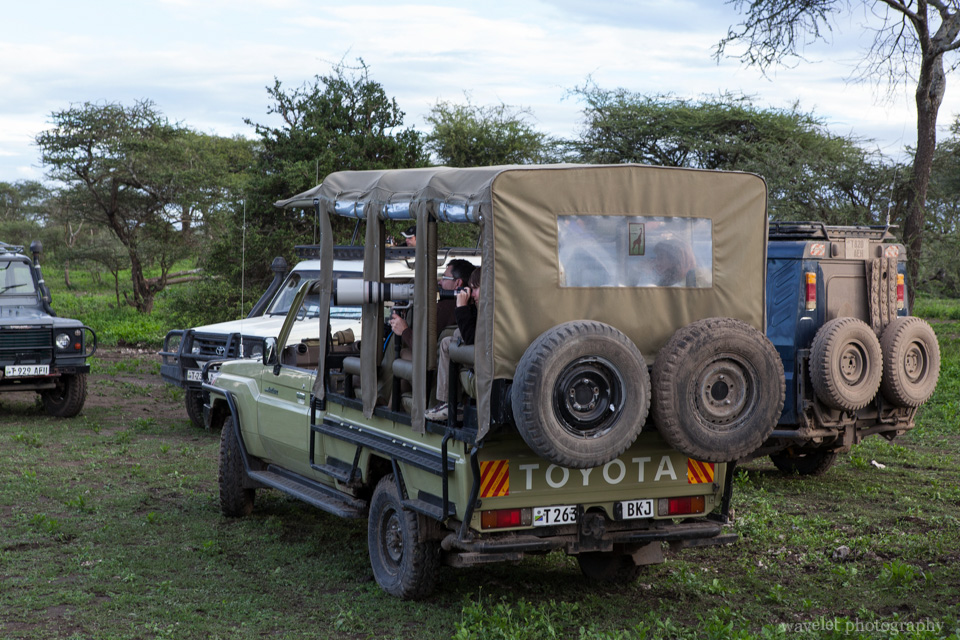 Photographer\'s jeep in Lake Ndutu