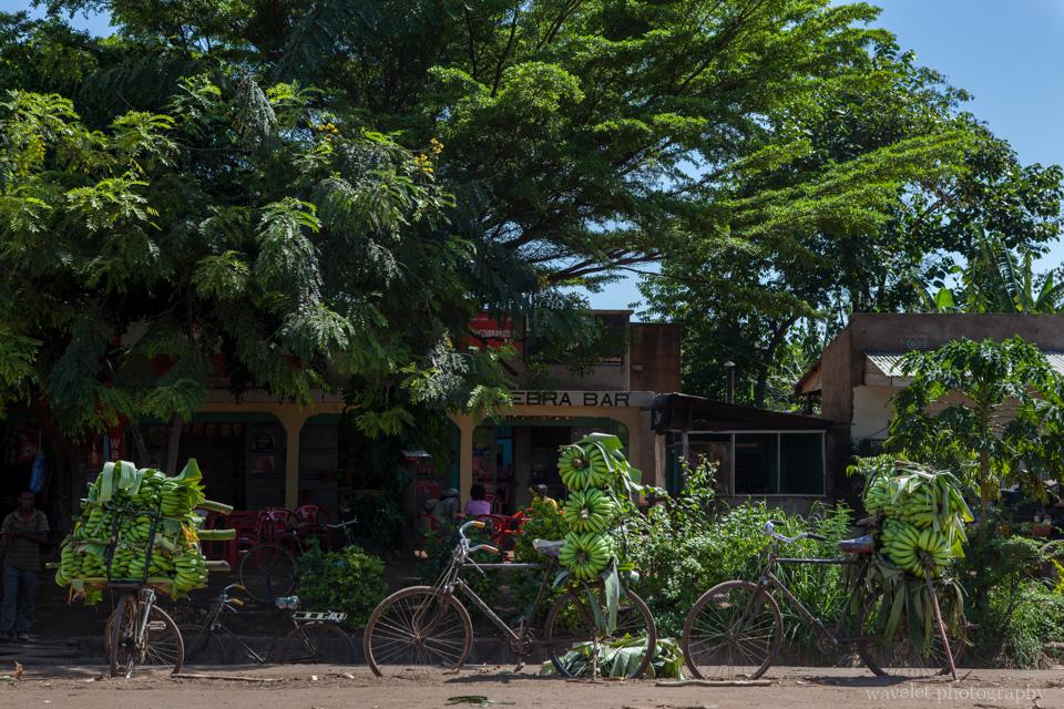 Tanzania\'s Staple Food - Bananas, Mto wa Mbu