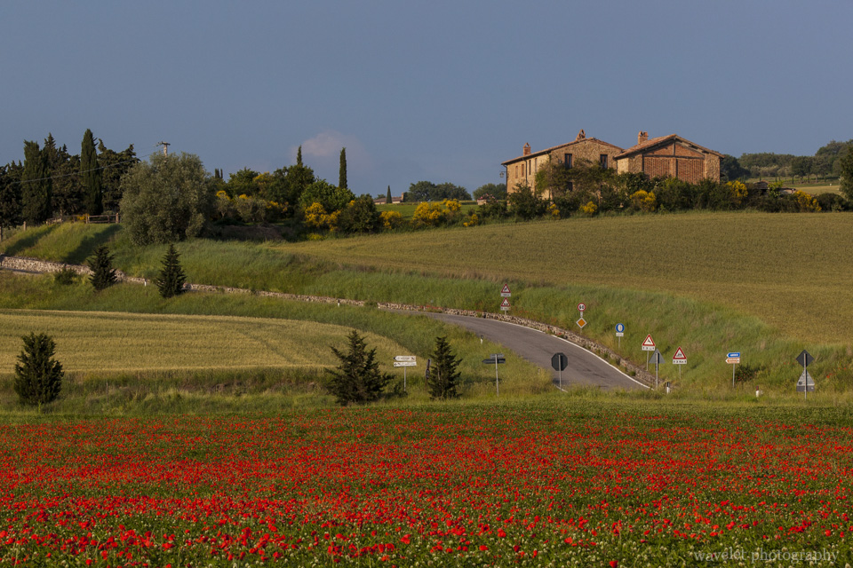 Intersection of SP del Monte Amiata and SP88, Southern Tuscany