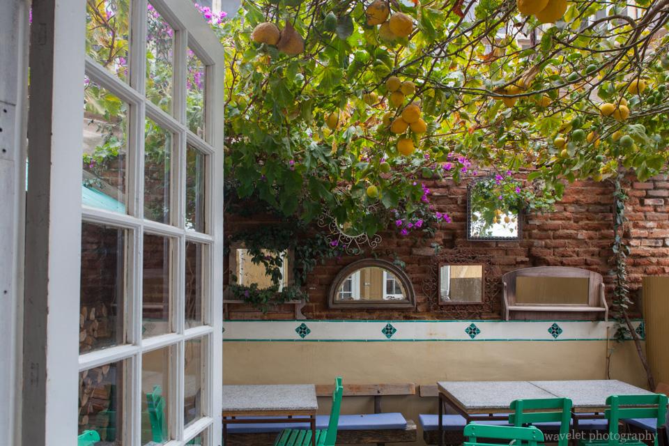 Backyard of a fance restaurant, Valparaiso