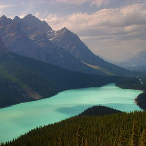 Banff and Jasper – Elk Encounters (2009/8/9)