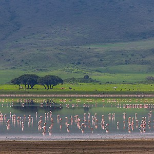 Tanzania – Ngorongoro Crater