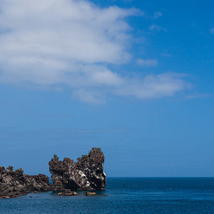 Read more about the article Galápagos – Float in the Wind